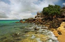 Reefs / ***