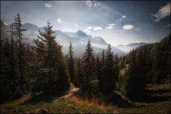 Bergherbst / Engadin