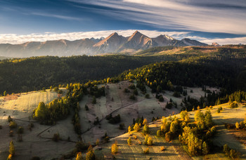 Cold morning / Cold morning on the meadows under the Tatras in Slovakia
