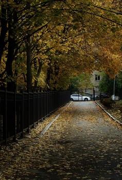 Urban Fall / ***