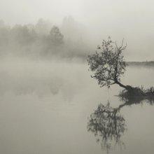 Morning River / ***