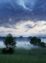 Evening ... misty ... / ***