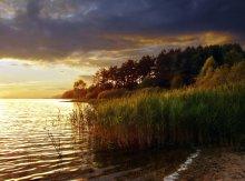 Golden evening ..... / ***