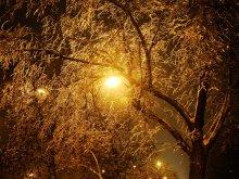 Brush winter evening ..... / ***