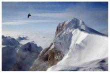 flying / ***