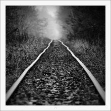Narrow Gauge /