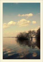 Spring reflection / *******