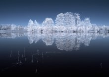 Untitled / infrared