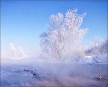 / Fragment of a frosty morning / / -30°C
