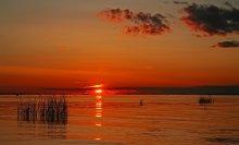 Peterhof sunset ... / ***