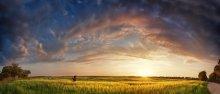Fields nemirovschiny photographer / ***