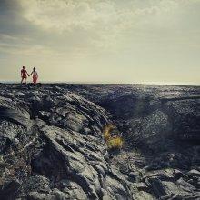 Landscape Relationships / ***