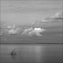 Gulf of Finland / ***