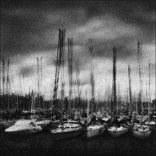 Harbor / ***