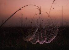fishing rod (net) / ***
