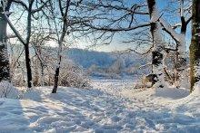 Winter. No wonder hutsuly beat the tambourine / ***