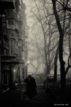 Misty evening. / ***