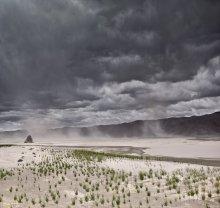 Brahmaputra Valley / ***