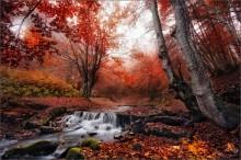 / Late fall / / ***