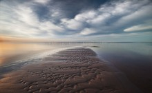Wild beach / ***