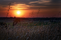 Masurian sunset / Picture taken in the northeast of Poland