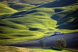 Farmhouse / Tuscany / Italia