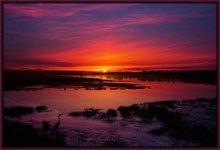 At the dawn .... / ***