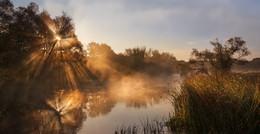 Fall River / ***