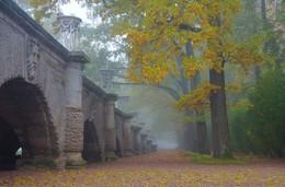 Autumn morning ... / ***