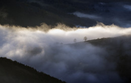Cloud Paradise / A foggy morning in the Auvergne / France