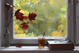 Autumn / ***