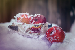 Apples in the Snow / ...