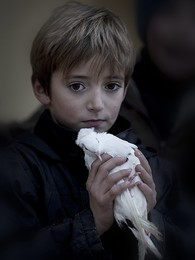 Boy with a dove /
