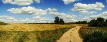 Summer / ***