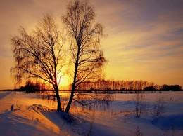 Evening / ***