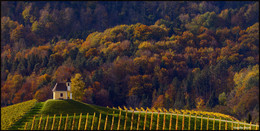 Autumn sketches / ***