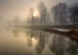 Silver Dawn / ***