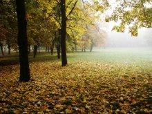 Autumn Breath / ***
