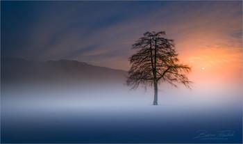 Untitled / Morgens an einen ruhigen Ort in der Obersteiermark.