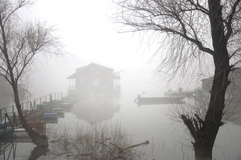 fog on the river / ***