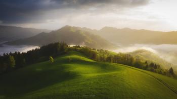 Simple landscape / ***