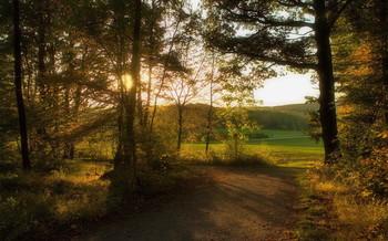 Autumn evening / ***