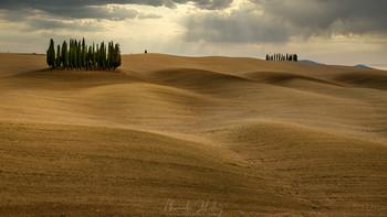 Tuscan hills / ***