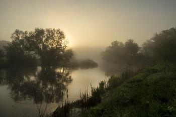 autumn mist / ***