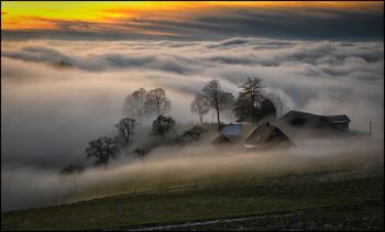 / Nebelwelle im Naturpark Gantrisch Schweiz