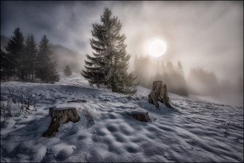 Alpen / ***