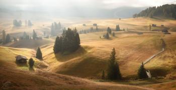 The Alpine village / ***