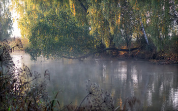 Morning on the river / ***
