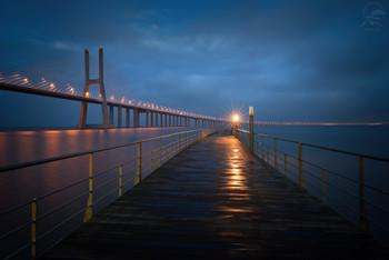 Vasco Da Gama bridge / ***