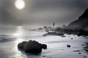 Morning solitude / A winter morning in Brittany...31st of december...I wished I was there again.